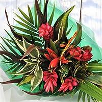 Homeland Florists Striking Beauty Tropical Fresh Flowers Bouquet, Red Yellow Orange, Medium
