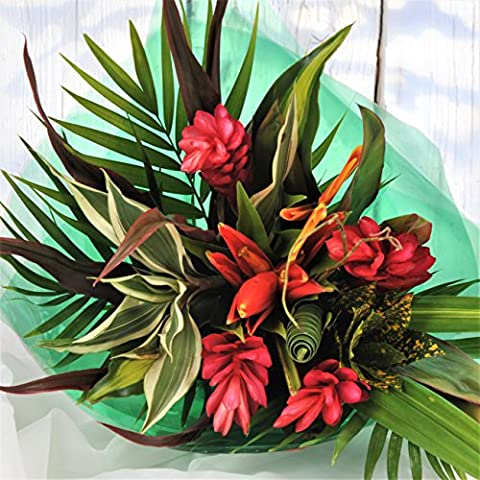 Striking Beauty Tropical Fresh Flower Bouquet - Flowers Delivered FREE UK Next Day Within 1hr Window 7 Days a Week - Unusual Gift Arrangement of Red, Orange & Yellow Exotic Real Cut Flowers