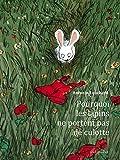 Telecharger Livres Pourquoi les lapins ne portent pas de culotte (PDF,EPUB,MOBI) gratuits en Francaise