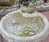 Radami Vogeltränke Vogelbad Wasserstelle Vogelbecken Schildkröte Gelb mit Vogel