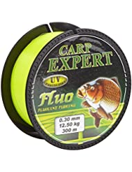 Enermax gofish Angel cuerda Line Carp Expert UV Fluo 0.30mm 300M, black, 1, 30120030
