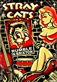 STRAY CATS-RUMBLE IN BRIXTON (DVD)