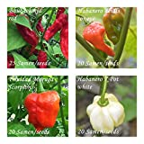 extreme Chilis - 4 neue superscharfe Sorten - je 20/25 Samen - Schärfegrade : 10 bis 10+++ !!!