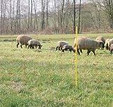 Filet mouton 50m H : 90cm orange VOSS.farming 14 piquets simple pointe clôture électrique
