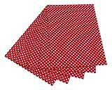 folia 5902 Fotokarton mit Punkten (50 x 70 cm, 10 Bogen) weiß/rot