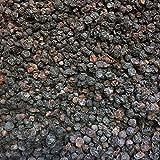 500g getrocknete Blaubeeren ohne Zusätze, versandkostenfrei (in D), leckere Trockenfrüchte ungeschwefelt und ungezuckert