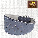 Woza Premium WINDHUND Halsband 5,3/37CM Studs Vollleder Jeans BLAU Rindleder Nappa Handmade Greyhound Collar