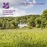 Colby Woodland Garden, Pembrokeshire: National Trust Guidebook