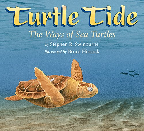 Turtle Tide: The Ways of Sea Turtles