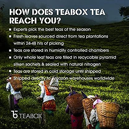 Teabox-White-Tea-Collections