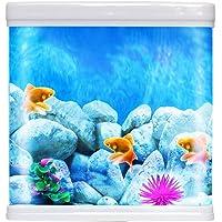 JAINSONS PET PRODUCTS 9 L Fish Aquarium Combo Tank (Colour May Vary)