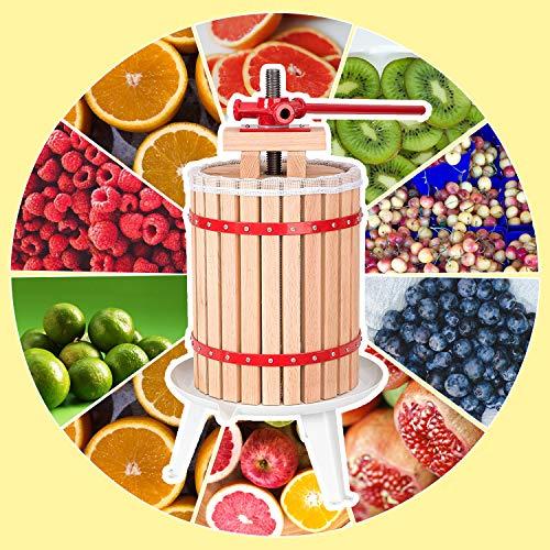 Hengda WIS Obstmühle Beerenmühle Traubenmühle Obstmuser Obsthäcksler Mühle Maischemühle mit Handkurbel Edelstahl (6 Liter Obstpresse)