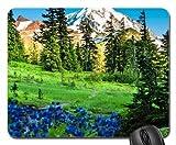 MT. Rainier Mauspad, Mousepad (Gebirge Maus Pad) - Best Reviews Guide