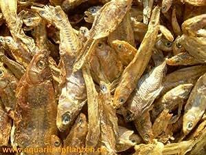 1000 g de poisson séché pour les tortues