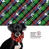 Doggy Loop - Hundeschal grün in S