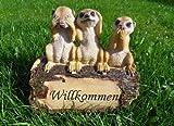 3 Erdmännchen WILLKOMMEN Meerkatze Gartenfigur Zwerg Gartenzwerg