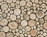 A.S. Création Papiertapete Dekora Natur Ökotapete Tapete in Holz Optik 10,05 m x 0,53 m beige braun schwarz Made in Germany 958361 95836-1
