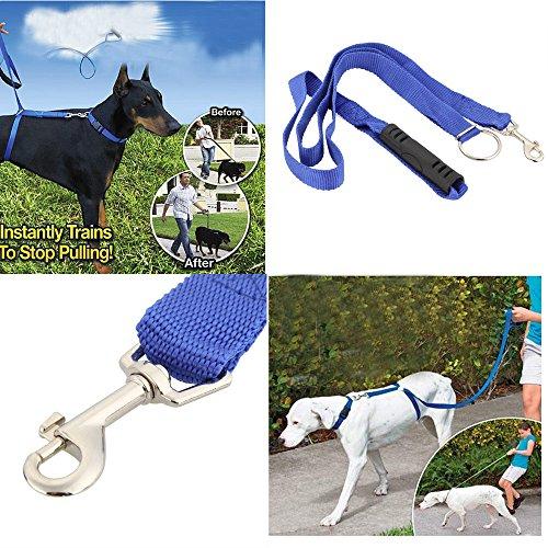vyage (TM) Hund Leine sofort Trainer für Hunde Pet Seil Walking Training 13,6kg 6ft 180cm Länge Pet Products
