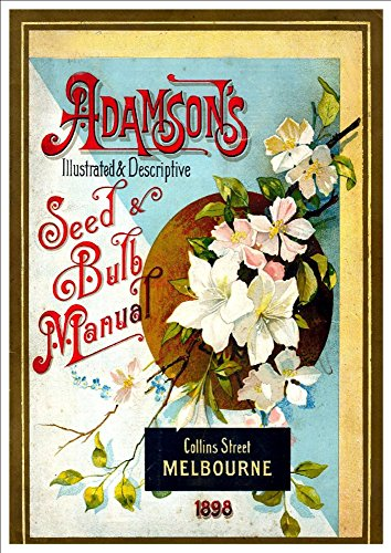 adamsons-seed-bulb-manual-1898-a4-glossy-art-print-taken-from-a-beautifully-illustrated-vintage-seed