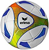 ERIMA ERIMA Hybrid Training royal