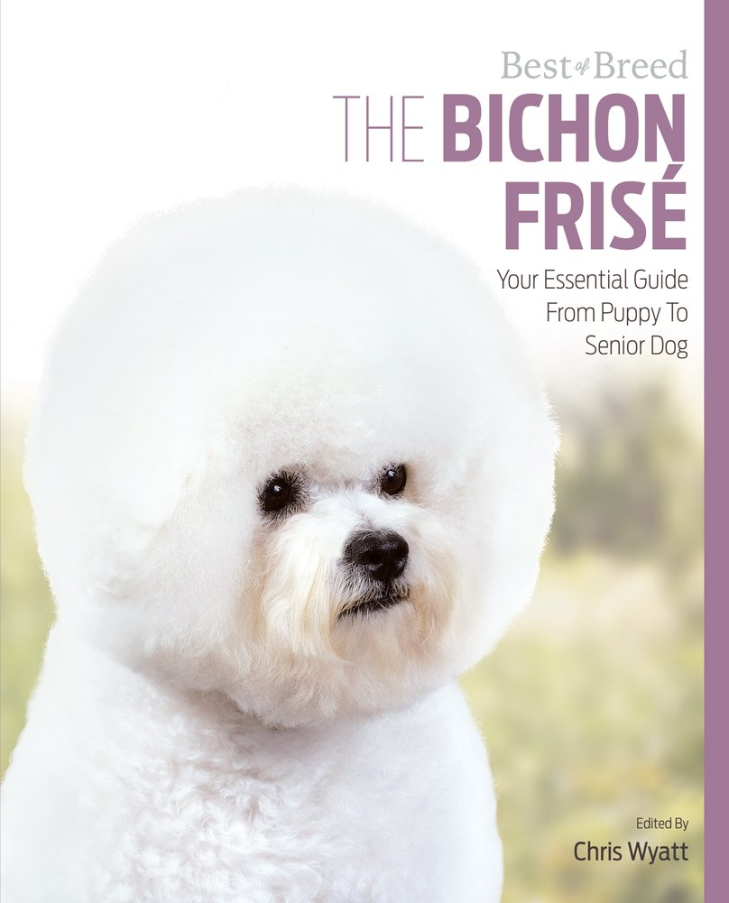 Bichon Frise Best of Breed: Your Essential Guide from Puppy to Senior Dog
