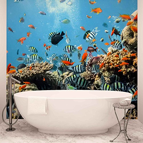 sea-ocean-fish-corals-photo-wallpaper-wall-mural-easyinstall-paper-giant-wall-poster-xl-208cm-x-146c