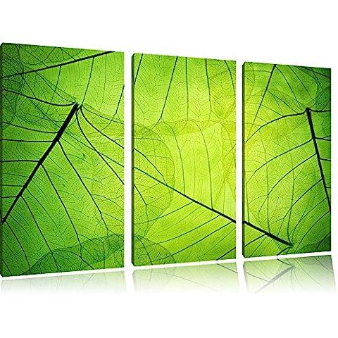 Foglie verdi bella delicato 3 pezzi di immagini su tela 120x80 su tela, XXL Immagini enormi completamente Pagina con la barella, arte stampa sulla foto muro con cornice, gänstiger come un dipinto o un dipinto ad olio, non un manifesto o un banner