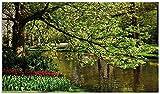 Wallario Herdabdeckplatte/Spritzschutz aus Glas, 1-teilig, 90x52cm, für Ceran- und Induktionsherde, Bunte Blumen im Park am Wasser - Frühblüher am Ufer