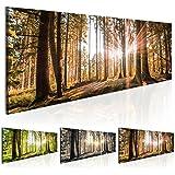 Cuadro 135x45 cm - 3 tres colores a elegir - 1 Partes - Formato Grande - Impresion en calidad fotografica - Cuadro en lienzo - Naturaleza bosque Paisaje c-B-0077-b-d 135x45 cm B&D XXL
