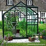 Juliana Halls Popular grün 106 Gewächshaus mit 3 mm Blankglas