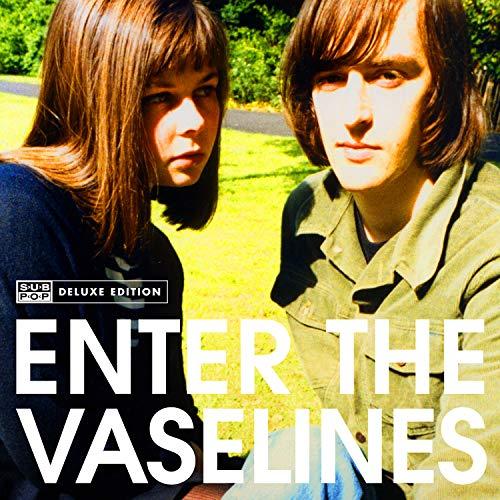Enter the Vaselines [Vinyl LP]