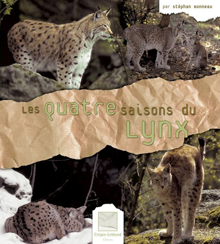 Les quatre saisons du lynx