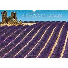 Chemins de lavande : Paysages de champs de lavande. Calendrier mural A3 horizontal 2016