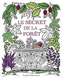 Le secret de la forêt - Cherche les bijoux cachés. Coloriages anti-stress pour adultes.