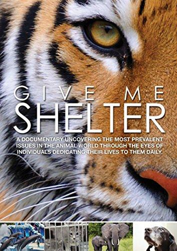 Bild von Give Me Shelter