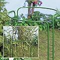 Staudenhalter Blumenhalter Pflanzenhalter Pflanzstütze Blumenstütze Staudenstütze 4-Stk 100cm hoch von ediGarden auf Du und dein Garten
