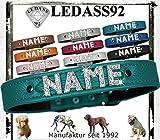 LEDASS92 Hundehalsband mit Namen Strass Halsband Name Strassbuchstaben Swarovski Elements (XXL - 50cm - 58cm Halsumfang verstellbar, türkis)