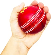 Fabulous 4 Piece Leather Cricket Ball Red (60+ Over)