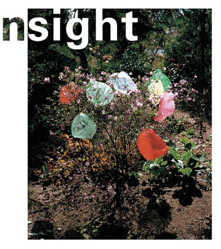 In Sight: Contemporary Dutch Photography from the Collection of the Stedelijk Museum, Amsterdam