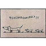 Salonloewe Fußmatte waschbar Hereingedackelt Family 50x75 cm beige-anthrazit mit Motiv Dackel Schmutzfangmatte Fußabtreter Sauberlaufmatte, Türvorleger, Hunde