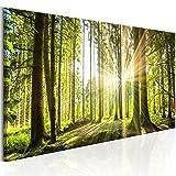 murando - Bilder Wald 135x45 cm - Leinwandbilder - Fertig