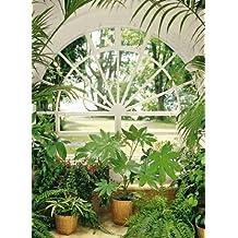 Suchergebnis Auf Amazon De Fur Tapete Fototapete Wintergarten