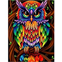 DIY Full Drill Diamond Painting Kit, DIY Owl Diamond Rhinestone Painting Art Craft for Beginner Home Wall Decor Gift, 12 X 16 Inch(Cute Owl)