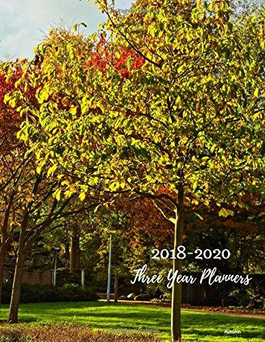 2018 - 2020 Autumn Three Year Planner: 2018-2020 Monthly Schedule Organizer – Agenda Planner for the Next Three Years/36 months calendar – 8.5 x 11 ... (3 year Diary/3 year Calendar/Logbook)