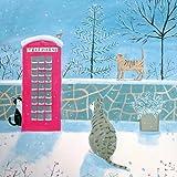 Caridad tarjetas de Navidad, Paquete de 8–Mary stubberfield–Aldea gatos