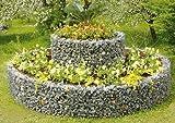 bellissa 2er Set HOCHBEET rund DOPPELRING Durchmesser 240cm Höhe 80cm Blumenbeet Kräuterspirale Gabione von Dekowelt%%
