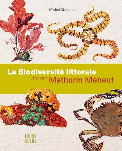 La Biodiversité littorale vue par Mathurin Méheut : L'art au service de la biologie marine
