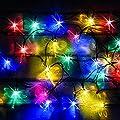 30mehrfarbige LED Libelle Solar Lichterkette von SPV Lights