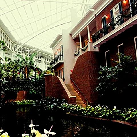 The Grand Opryland Hotel Ambiance with Waterfalls and Passer-bys