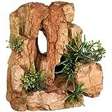 Nobby Rock con plantas acuario adornos, 22x 16,3x 22cm